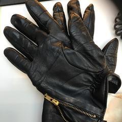 Gloves, segundo informou Rijksmuseum usando iLost