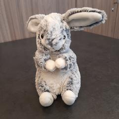 Knuffel, as reported by Rotterdam The Hague Airport using iLost