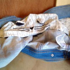 Jean Cat jacket, as reported by Holland Ridge Farms using iLost