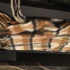 Sjaal, zoals gemeld door Van der Valk Hotel Amsterdam Zuidas met iLost