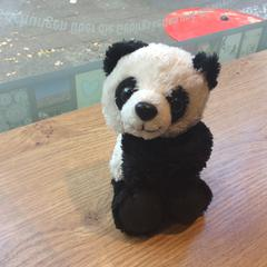 "Little Panda toy, as reported by MEININGER Hotel Berlin ""Mitte"" Humboldthaus using iLost"