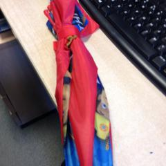 Paraplu, zoals gemeld door Dolfinarium met iLost