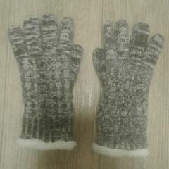Handschoenen, zoals gemeld door Diergaarde Blijdorp met iLost