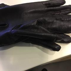 Leren handschoen, zoals gemeld door Reinier de Graaf, De Gravin met iLost
