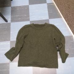 trui, zoals gemeld door Jaarbeurs met iLost