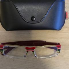 bril met koker, as reported by Keukenhof using iLost