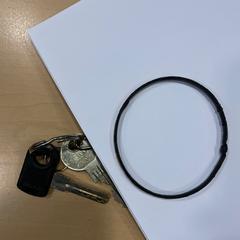 Bosje sleutels en een armband, zoals gemeld door Jaarbeurs met iLost
