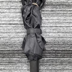Paraplu zwart, as reported by Arriva Vechtdallijnen using iLost