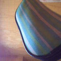 Glasses case with small black glasses, as reported by Holland Ridge Farms using iLost