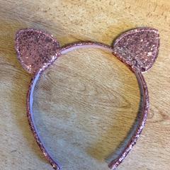 Haarband, zoals gemeld door Dolfinarium met iLost