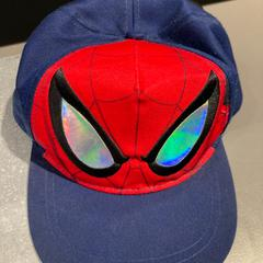 Spider-Man pet, as reported by Pathé Tilburg Stappegoor using iLost