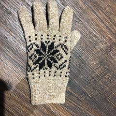 Handschoen links, as reported by Van der Valk Hotel Veenendaal using iLost