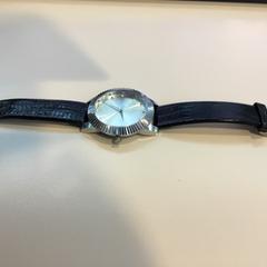 Horloge, zoals gemeld door Reinier de Graaf, De Gravin met iLost