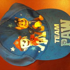 Pet paw patrol, as reported by Apenheul using iLost