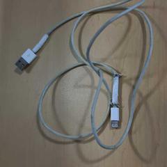 Apple kabel, zoals gemeld door Jaarbeurs met iLost