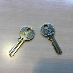 2 losse sleutels, zoals gemeld door Gemeente Dongen met iLost