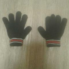 Handschoen, zoals gemeld door Diergaarde Blijdorp met iLost