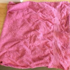 Roze handdoek, zoals gemeld door Dolfinarium met iLost