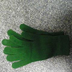 Groene handschoenen, zoals gemeld door Connexxion Hoekse Waard/Goeree Overflakkee met iLost