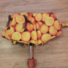 Paraplu, zoals gemeld door Arriva Venlo met iLost