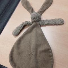 Knuffel konijn, as reported by Arriva Vechtdallijnen using iLost