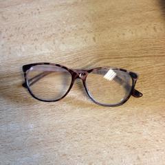 Bril, zoals gemeld door Dolfinarium met iLost