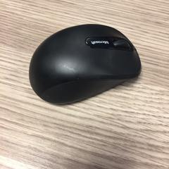 Microsoft mouse, as reported by RAI Amsterdam using iLost