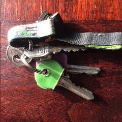 Sleutelbos groen en paarse sleutelhoes
