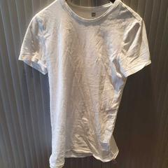 T shirt, zoals gemeld door Van der Valk Hotel Apeldoorn - De Cantharel met iLost