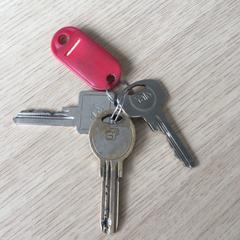 Sleutelbos met rode sleutel, zoals gemeld door Gelderpop met iLost