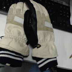 Handschoenen, as reported by SnowWorld, Landgraaf using iLost