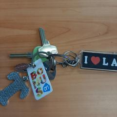 sleutelbos, zoals gemeld door Connexxion Overijssel / Flevoland-IJsselmond met iLost