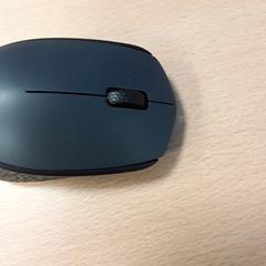 Muis, zoals gemeld door Arriva Vechtdallijnen met iLost