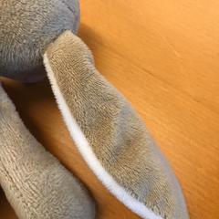 Knuffel, zoals gemeld door GVB met iLost