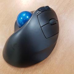 Mouse, zoals gemeld door Inntel Hotels Amsterdam Centre met iLost