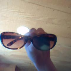Foster grant sunglasses (turtle shell), as reported by Holland Ridge Farms using iLost