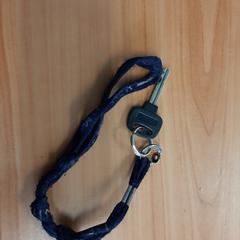 sleutel met blauw koord, ha sido reportado por Connexxion Overijssel / Flevoland-IJsselmond con iLost