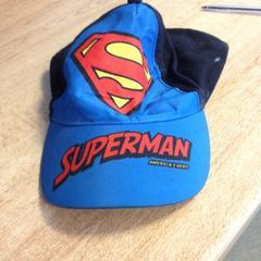 Superman pet