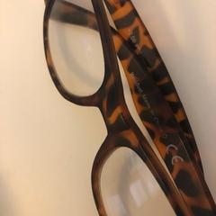 Bril, zoals gemeld door GelreDome met iLost