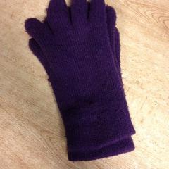 Handschoenen, gemeldet von Dolfinarium über iLost