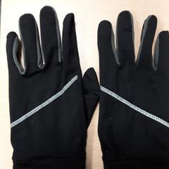 Handschoenen, zoals gemeld door Arriva Vechtdallijnen met iLost