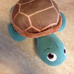 Knuffel schildpad, zoals gemeld door Dolfinarium met iLost