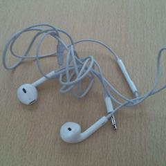 Earpods, as reported by Walibi Holland using iLost