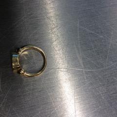 Ring, zoals gemeld door Gemeente Arnhem met iLost