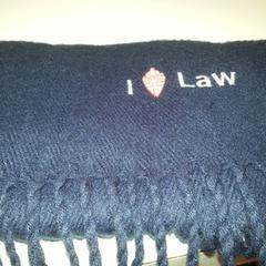 blauwe sjaal 1 februari, as reported by Cursus en vergadercentrum Domstad using iLost