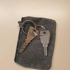 Buideltje met twee sleutels., zoals gemeld door Gemeente Wijk bij Duurstede met iLost