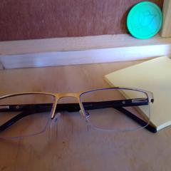 Glasses (silver frame), as reported by Holland Ridge Farms using iLost